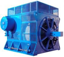 Электродвигатель Электромаш АДН-630LA-12
