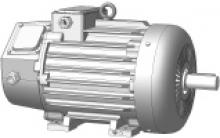 Электродвигатель БЭЗ ДMTF 311-6 У1 IM1001